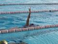 p2m_2014_schwimmtraining_1028_262